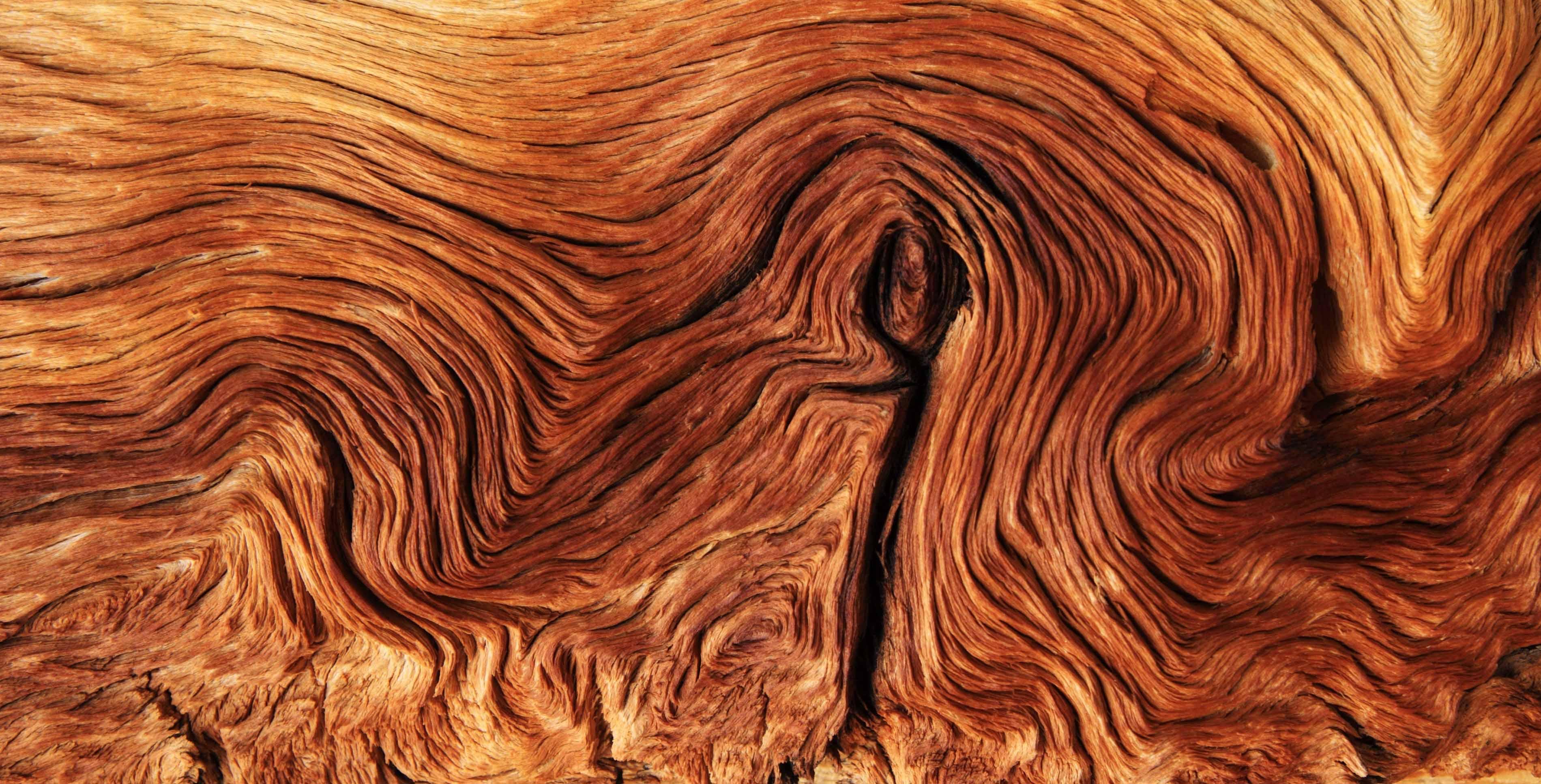 Holz Kontur Maserung als Synonym für Wurzelkanalbehandlung